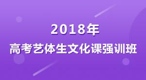 大智教育2018年高考艺体生文化课强训班