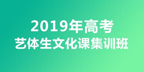 大智教育2019年高考艺体生文化课集训课程